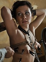 Cuffed, pegged, whipped, dildoed, used